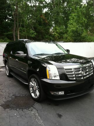 2008 Cadillac Escalade Esv Limo Ceo Black - (platinum,  Lincoln,  Stretch) photo