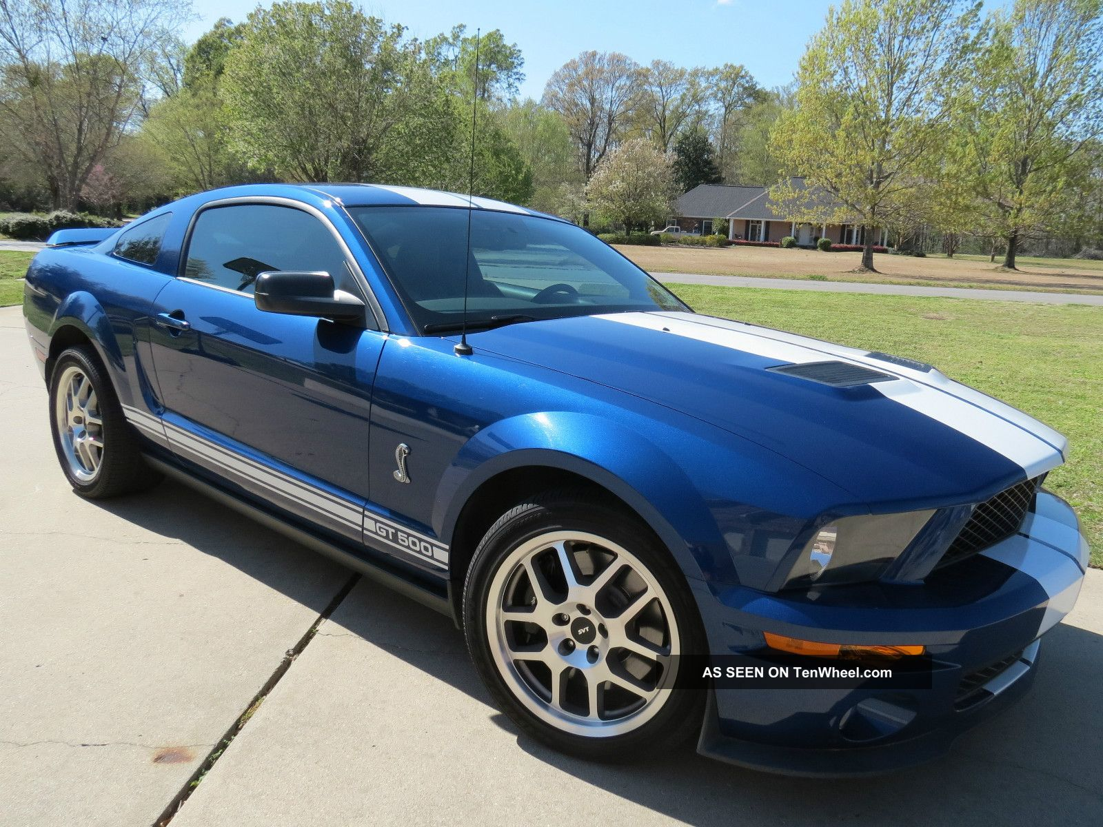 2009 Ford Mustang Shelby Gt500 Blue White Stripes