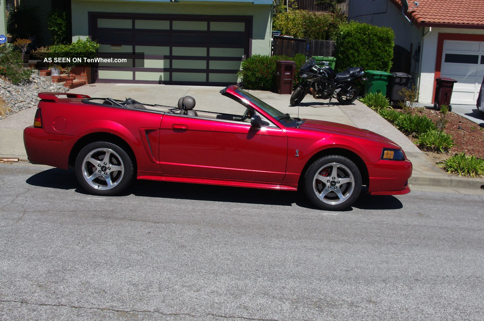 2001 ford svt mustang cobra convertible laser tint red clearcoat. Black Bedroom Furniture Sets. Home Design Ideas