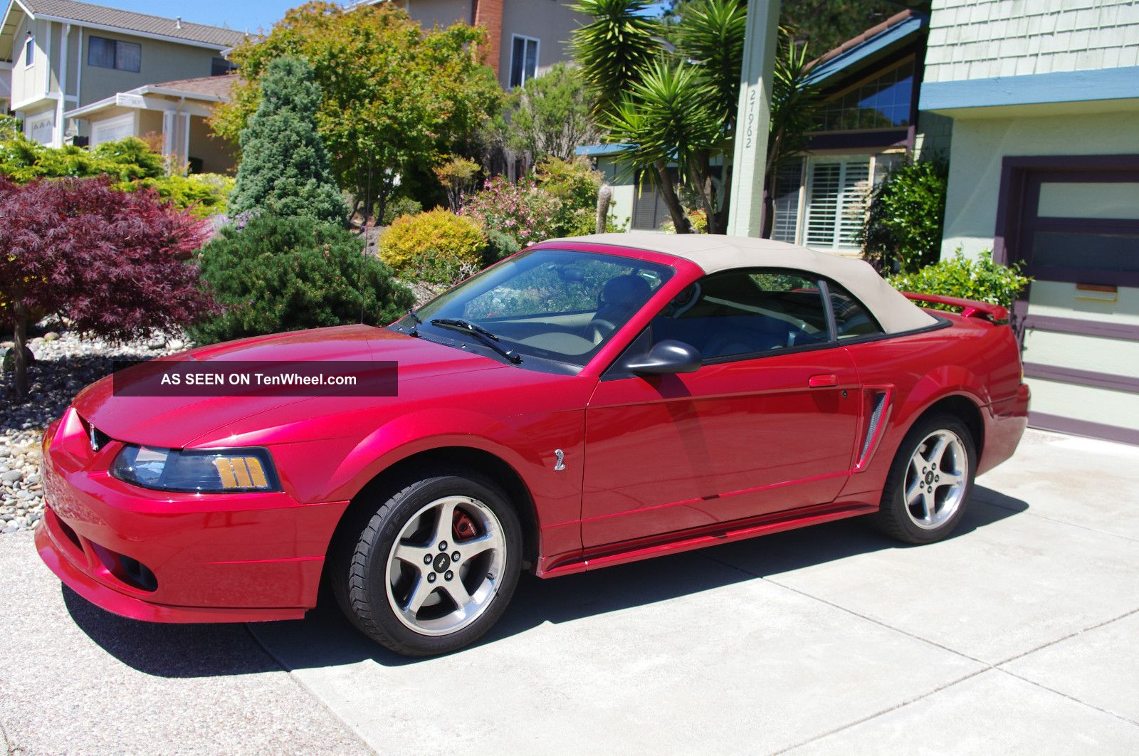 2001 ford svt mustang cobra convertible laser tint red