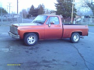1980 Chevy Gmc Pickup Shortbed photo