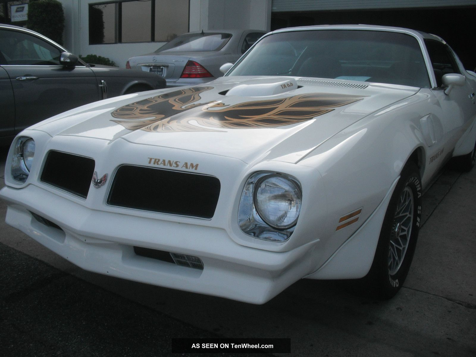 1976 Pontiac Trans Am,  T Top, , Trans Am photo