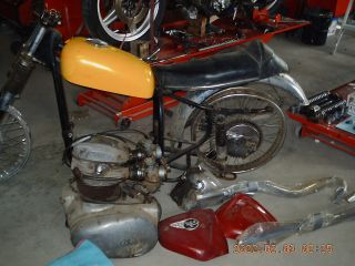 1967 Bsa Hornet Project Bike photo