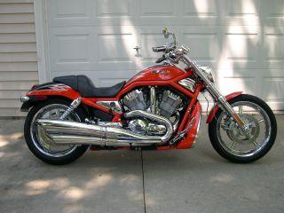 2005 Harley Davidson Cvo Screamin Eagle V - Rod Vrscse photo