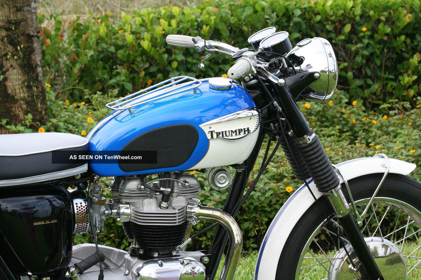 1966 Triumph Tr6sr Trophy Motorcycle Amca Winners Circle