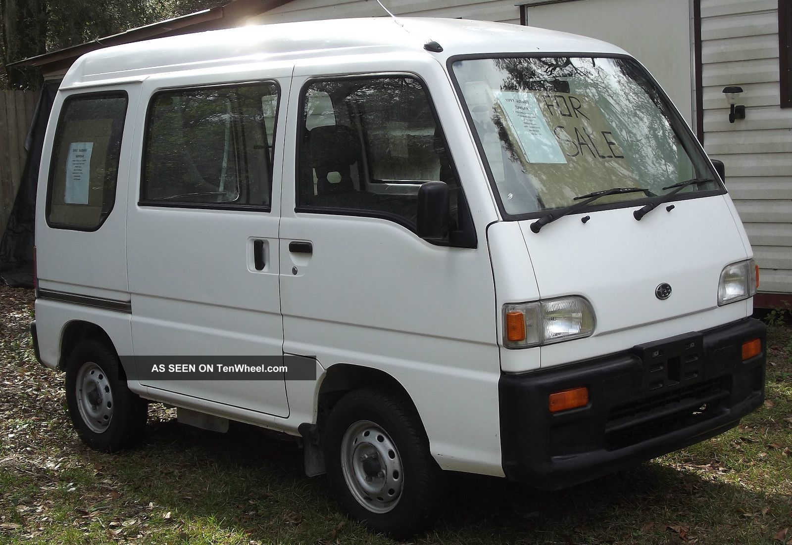 white Sambar image