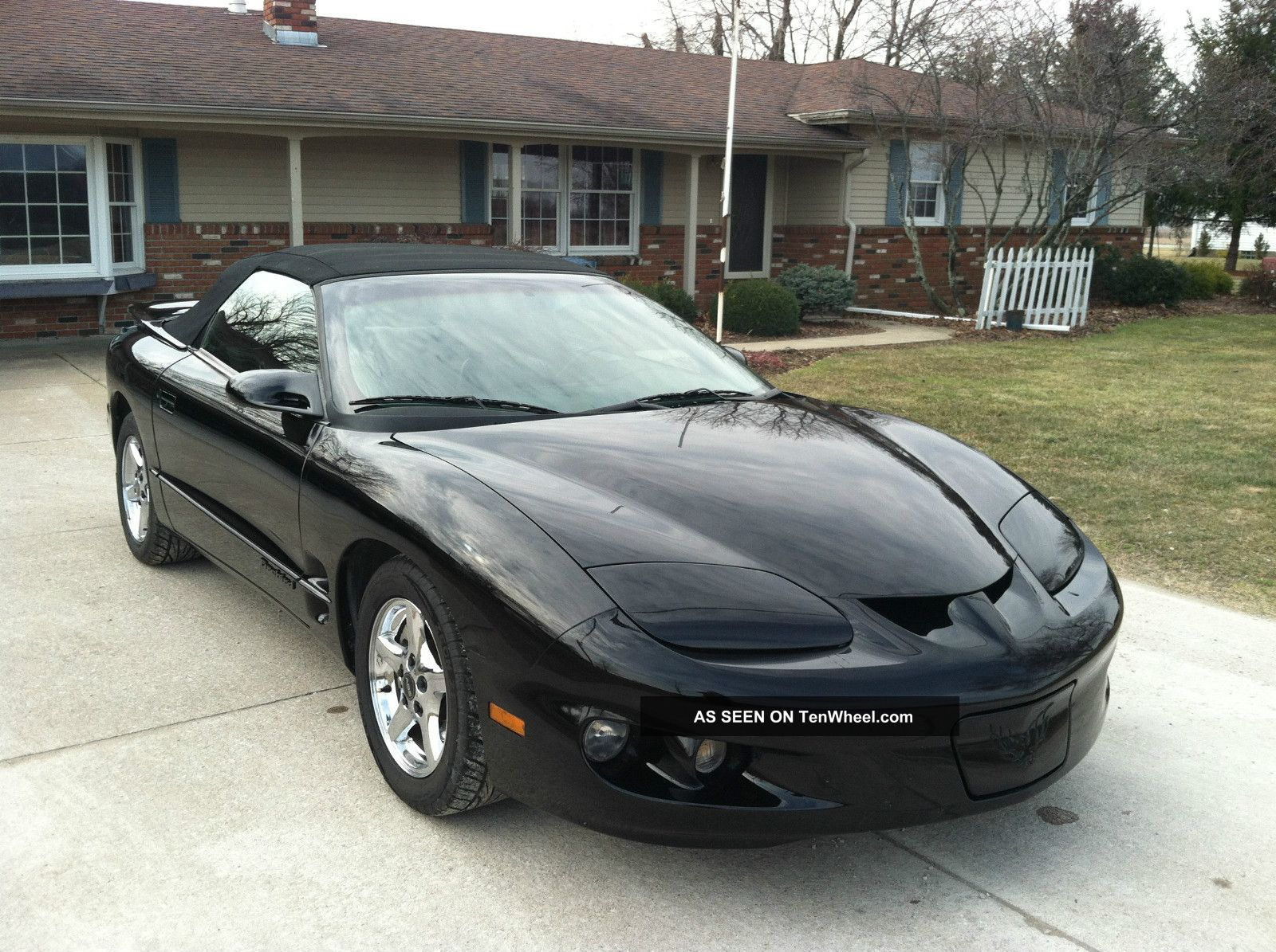 2002 pontiac firebird base convertible 2 door 3 8l. Black Bedroom Furniture Sets. Home Design Ideas