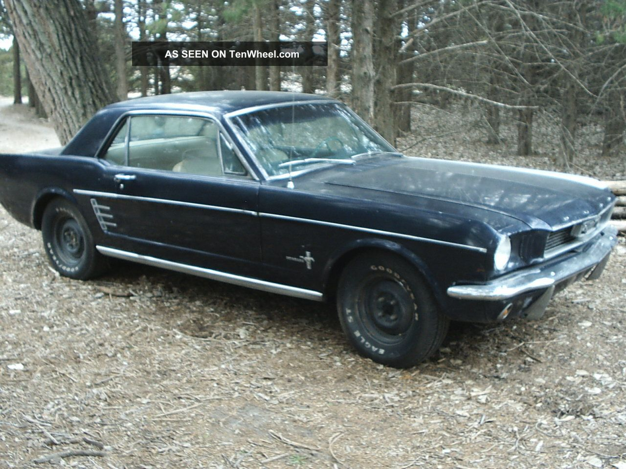 1966 Ford Mustang Coupe 6cyl / Auto Mustang photo