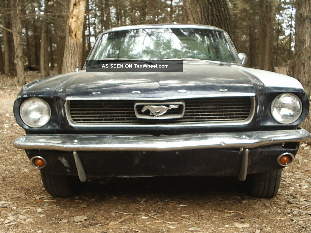 1966 ford mustang coupe 6cyl auto. Black Bedroom Furniture Sets. Home Design Ideas