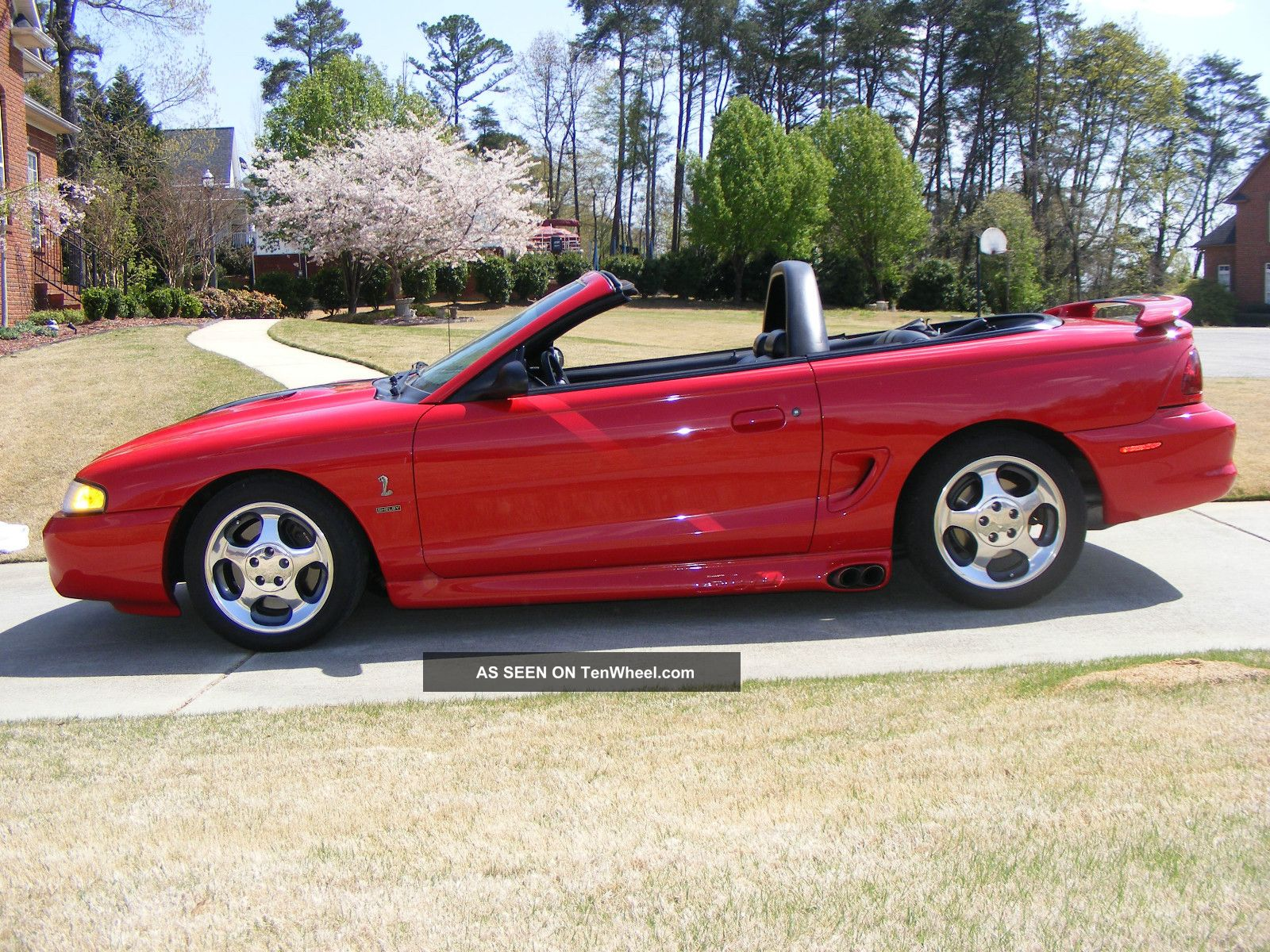 1997 ford mustang svt cobra convertible 2 door 4 6l mustang photo 1