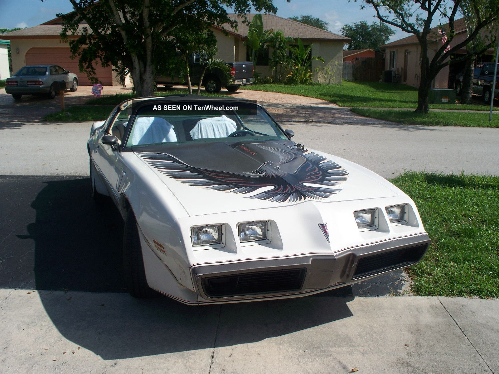 1980 Pontiac Turbo Trans Am Pace Car