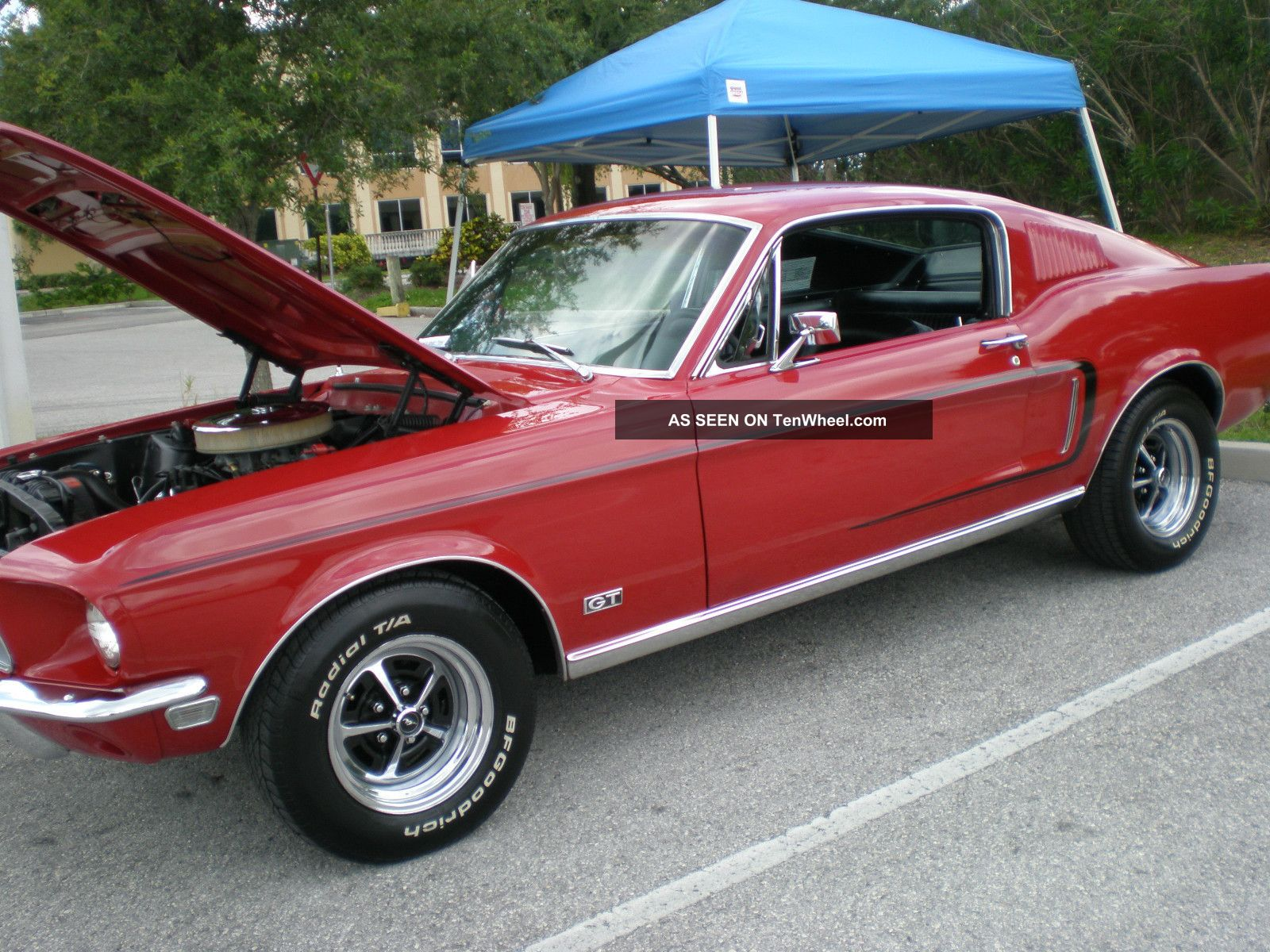 ford mustang fastback gt 1968 mustang photo 4. Cars Review. Best American Auto & Cars Review