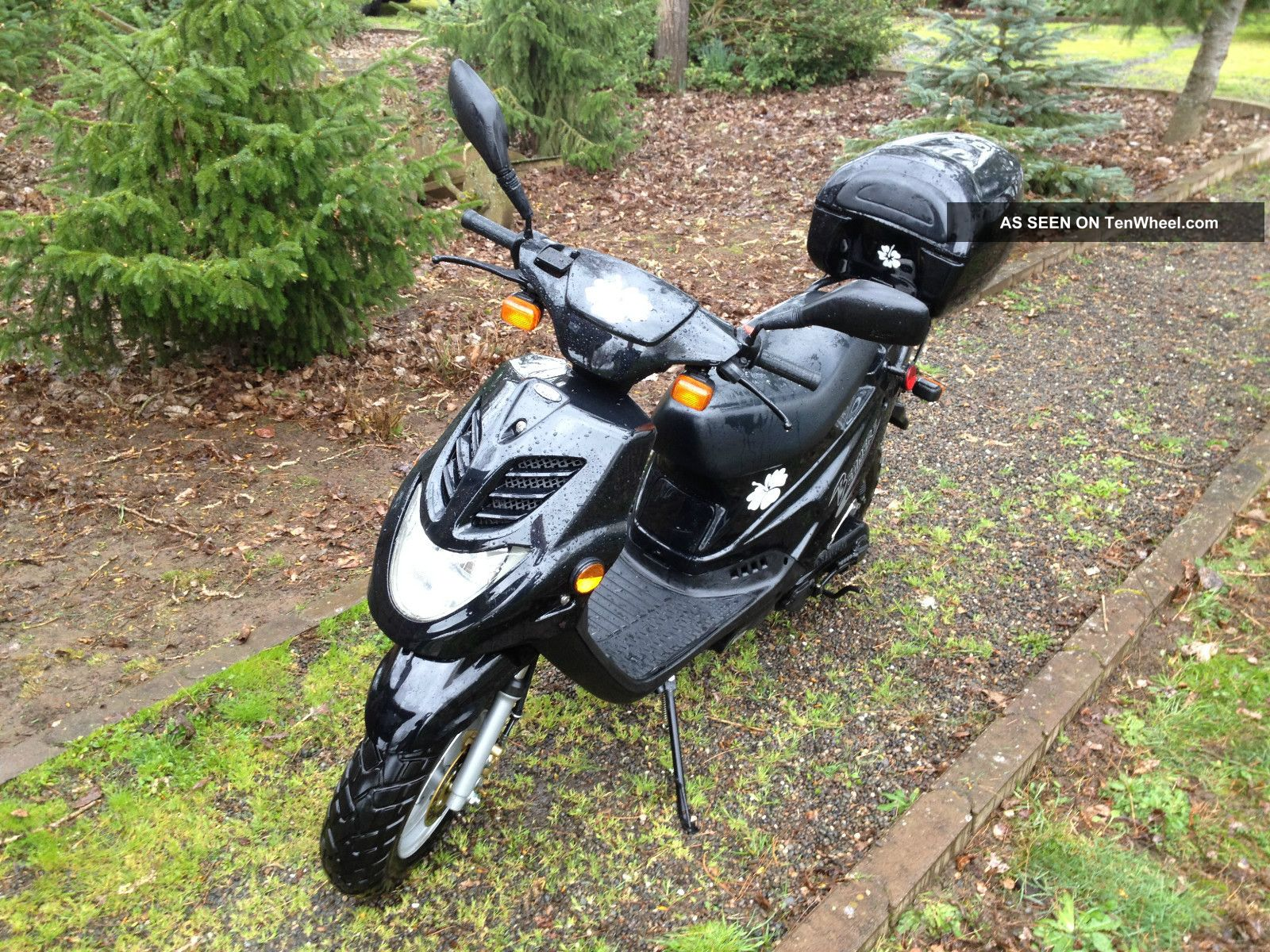 2005 E - Ton Beamer Ii 49.  3cc Scooter Moped Motorcycle Eton 2 50cc Black Pn2b 50 Other Makes photo