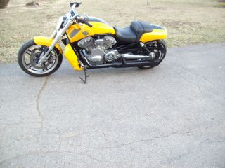 2011 Harley Davidson V Rod Muscle Vrscf photo