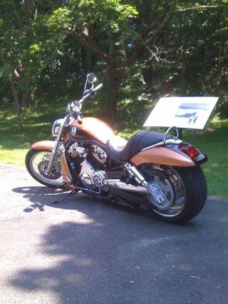 2008 Harley Davidson V - Rod (anniversary) photo