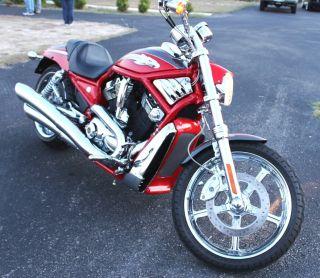 2006 Harley - Davidson Limited Edition Screaming Eagle V - Rod photo