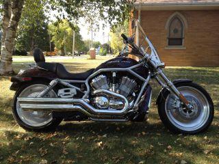 2005 Harley Davidson Vrsca Vrod photo