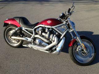 2003 Harley Davidson V Rod Turbo Vrsc Vrsca 100th Anniversary photo