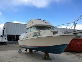 1979 Stamas Sport Cruiser Flybridge photo