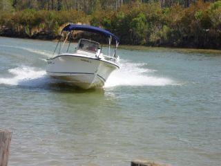 2002 Sea Hunt Triton 202 photo
