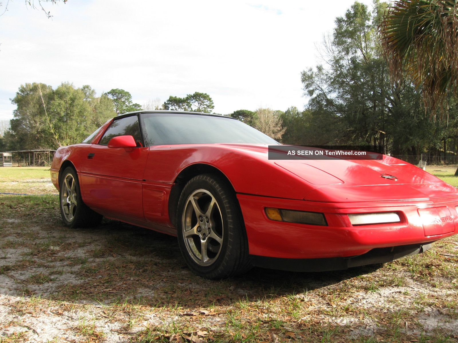 1885 little red corvette need little fixen corvette photo 3. Cars Review. Best American Auto & Cars Review