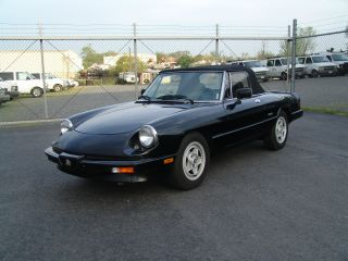 1987 Alfa Romeo Spider Black photo