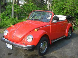 1979 Beetle Convetible photo