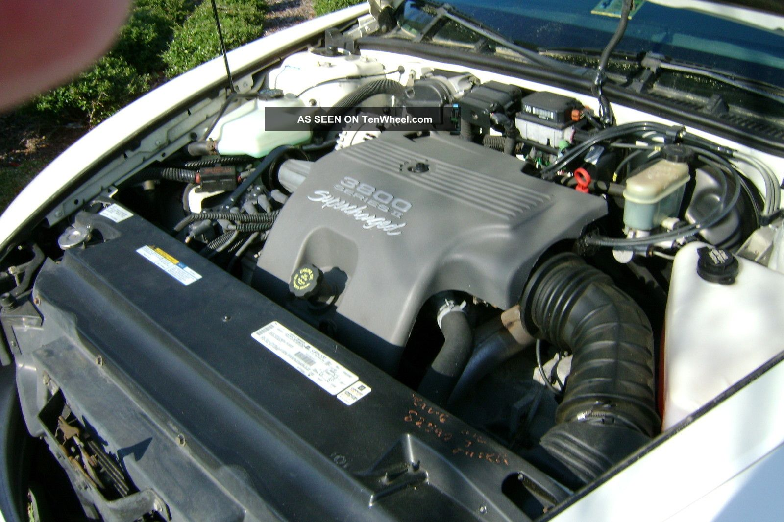 Buick Riviera Supercharged L D Coupe Lgw on Buick 3800 Supercharged Engine