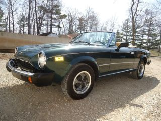 1979 Fiat Spider Convertible Sports Car photo