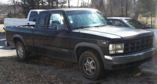 1994 Dodge Dakota 2wd photo