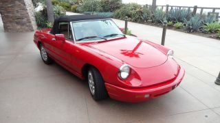 1991 Alfa Romeo Spider Veloce Convertable - California Car,  2 Owner, photo