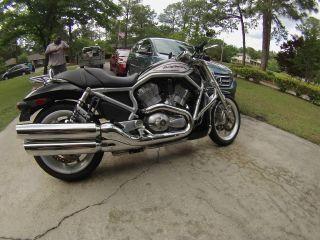 2006 Harley Davidson Vrscr Street Rod, , ,  Many Extras photo