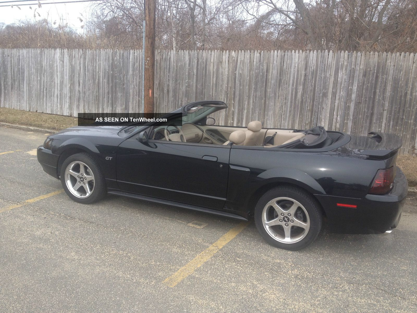 2003 ford mustang gt convertible 2 door 4 6l. Black Bedroom Furniture Sets. Home Design Ideas
