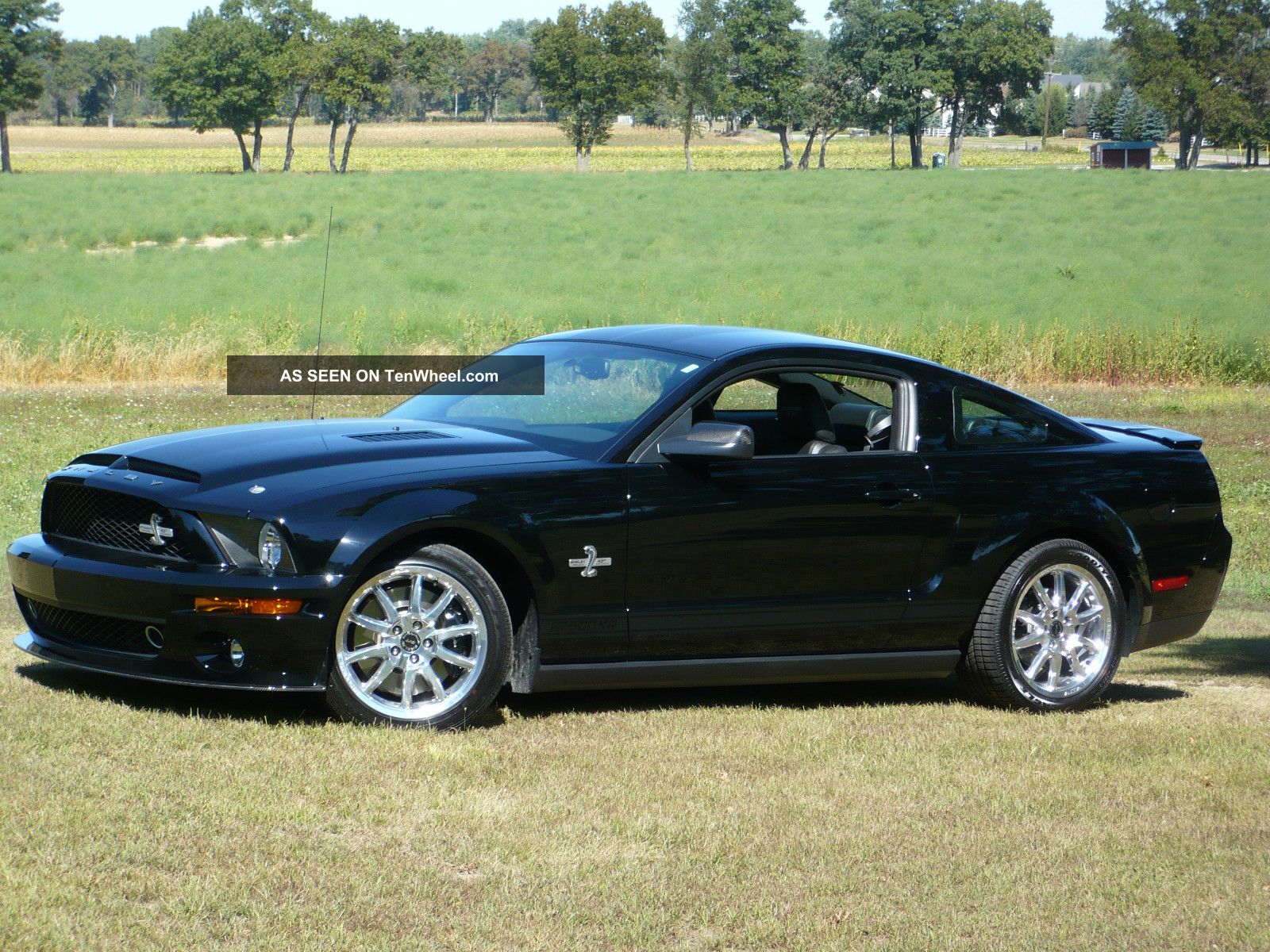 2008 ford mustang shelby gt500 kr 82. Black Bedroom Furniture Sets. Home Design Ideas