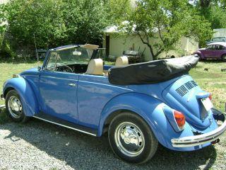 1972 Volkswagen Beetle Base 1.  6l Convertable photo