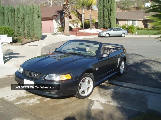 1999 ford mustang gt convertible 2 door 4 6l mustang photo 2. Black Bedroom Furniture Sets. Home Design Ideas