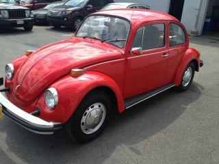 1974 Volkswagen Beetle Base Sedan 2 - Door 1.  6l photo