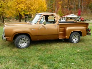 1979 Dodge Custom D150 photo