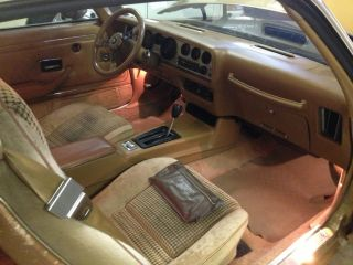 1980 Pontiac Trans Am photo