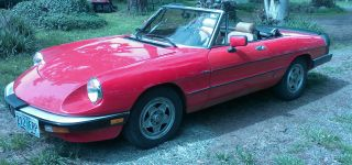 Red 1983 Alfa Romeo Spider Veloce Convertable photo