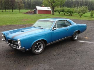 1967 Gto,  4 Speed,  Real Gto 242 Car,  California Car,  Excelent Driver photo