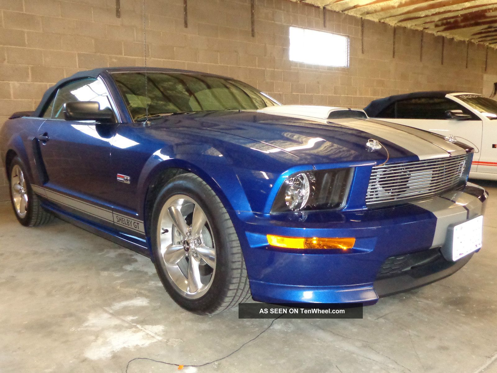 2008 Shelby,  Roush And Saleen Mustangs Shelby photo