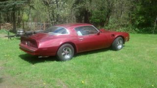 1976 Classic Pontiac Trans Am photo