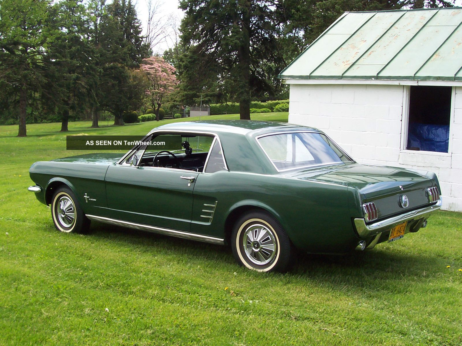 1966 Mustang Coupe Time Capsule
