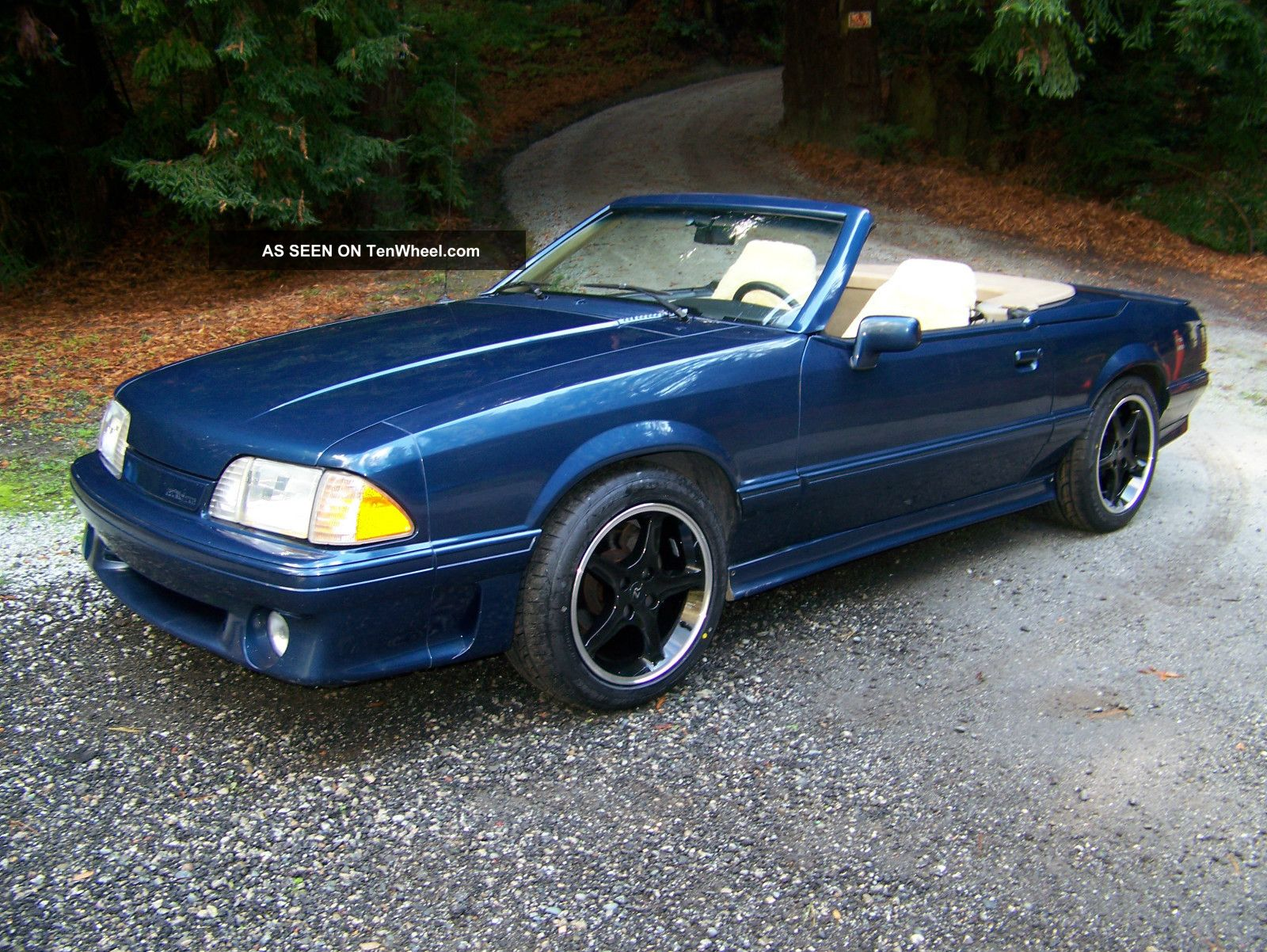 Asc Mclaren Mustang Coupe Convertible Lgw on 1988 Chevy Truck 350 Engine