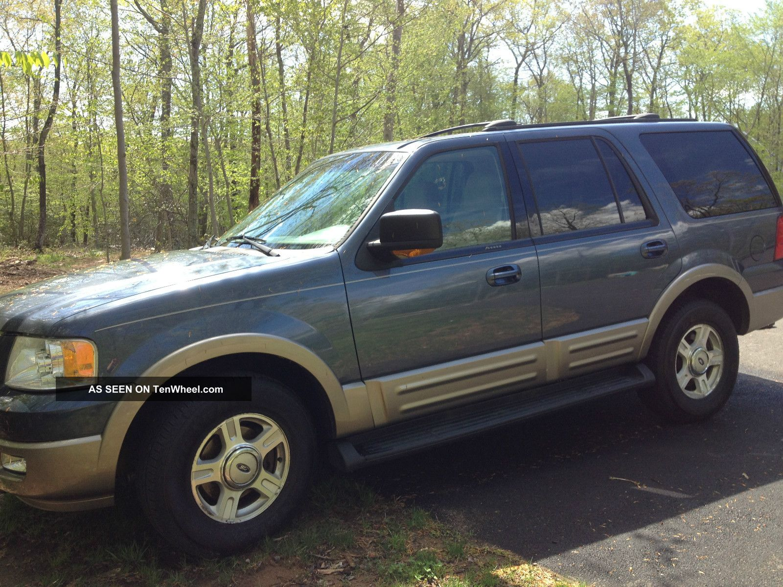 2003 Ford Expedition Eddie Bauer Sport Utility 4 - Door 5.  4l Expedition photo