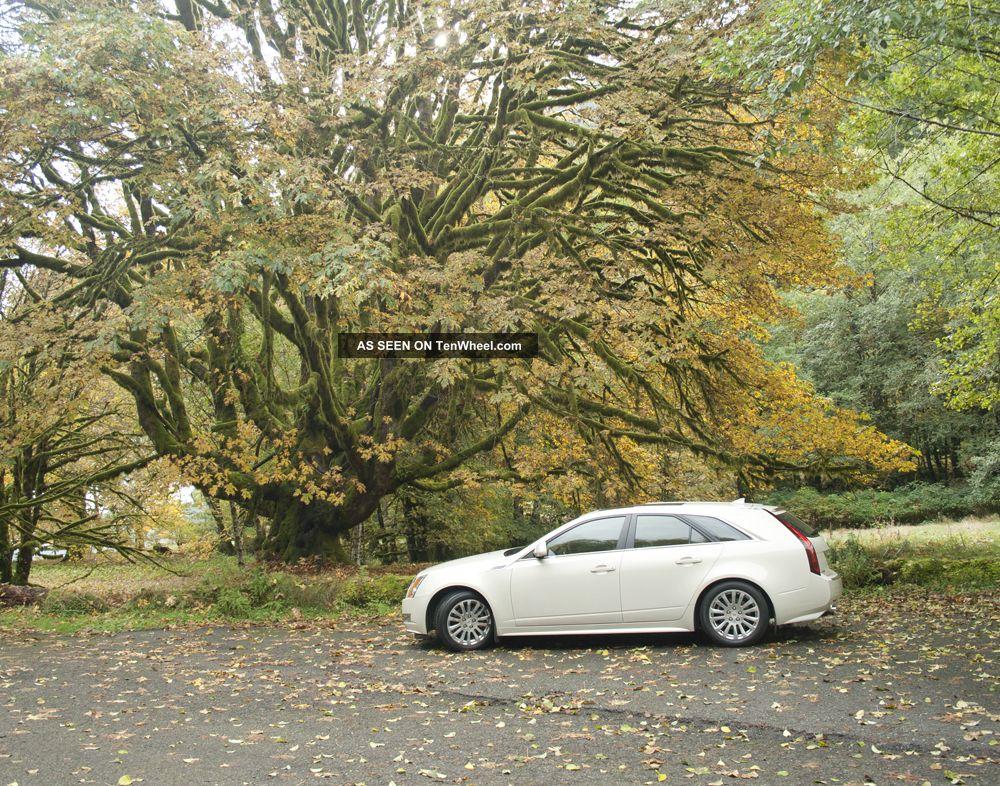 2010 Cadillac Cts Performance Sport Wagon CTS photo
