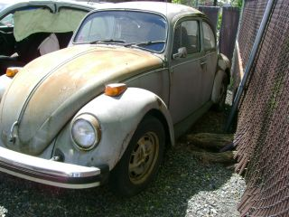 1976 Volkswagen Beetle Base Sedan 2 - Door photo