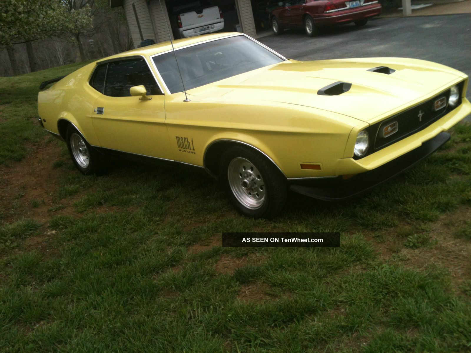 1971 ford mustang mach 1 fastback mustang photo. Cars Review. Best American Auto & Cars Review
