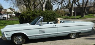 1966 Plymouth Sport Fury Convertible,  383 V - 8, photo